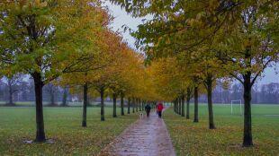 Deszczowe i chłodne dni. W weekend miejscami zaledwie osiem stopni